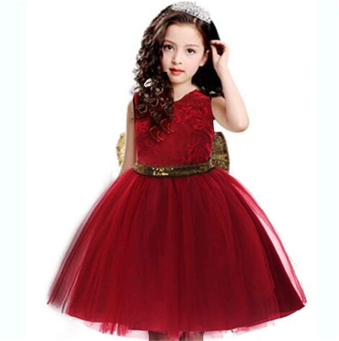 Baby Flower Girl Dress Wedding  (0-12 Year)
