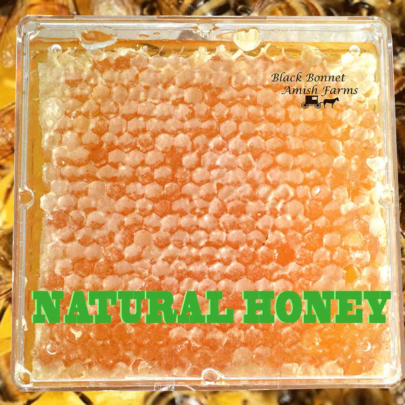 Raw Natural Honey Comb Full of Honey in a Box From Black Bonnet Amish Farms, عسل عضوي